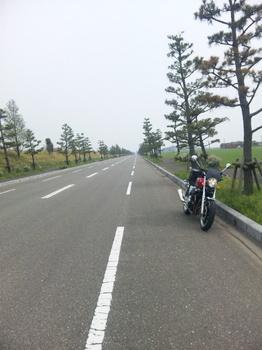 20110522 154.jpg